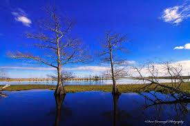 Florida scenery images Florida landscape outdoor photography jpg