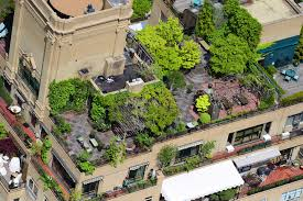 rooftop patios aerial photographer peter massini captures nyc s hidden rooftop