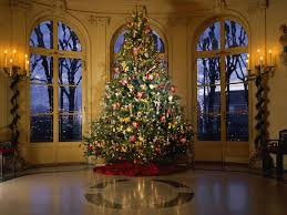 Christmas Tree Decorating Ideas Pictures 2011 24 Stunning Christmas Tree Images