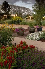 Denver Botanic Gardens Free Days 116 Best Denver Botanical Gardens Images On Pinterest Botanical