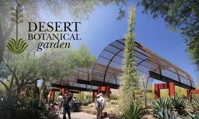 Scottsdale Botanical Gardens 53 Desert Botanical Garden Membership Desert Botanical