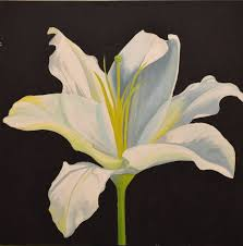 white lilly saatchi white painting by dasol