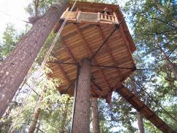 Best Treehouse So You Want To Install A Garnier Limb