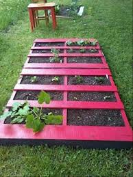 10 pallet gardening ideas pallets designs inspiring to make your