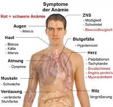 leberschwäche symptome leberschwäche symptome jtleigh hausgestaltung ideen