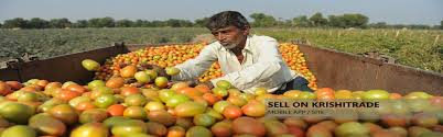 farmers traders buyers agricultural produce u0026 products krishi