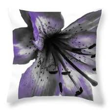 Shabby Chic Designer by Petite Noir Petals Floral Designer Duvet Covers Black And White