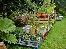 29 best container gardens images on pinterest herb garden urban