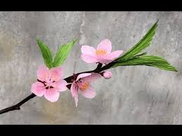 delaware state flower abc tv how to make peach blossom flower from crepe paper craft