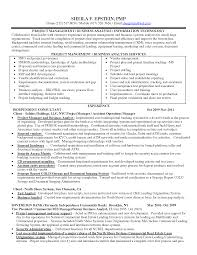 sample resume for financial analyst entry level business analyst project manager cover letter