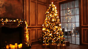 new year tree decorated with lights interior background