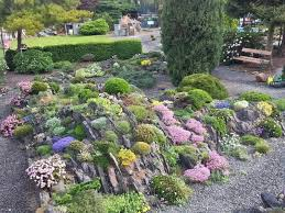 Scottish Rock Garden Forum Third International Rock Garden Conference 10 15 May 2017