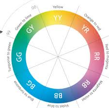 the colour wheel champions of colour