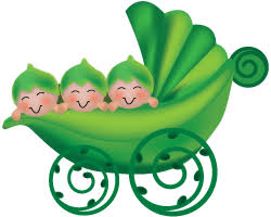 3 peas in a pod peas in a pod infant care