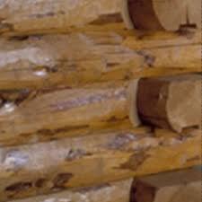 log floor lok n logs log homes cabins manufacturer sherburne new york