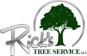 rick s tree service tree removal trimming delaware pennsylvania