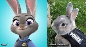 6 ways bunny reminds fans zootopia u0027s judy hopps