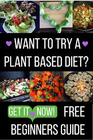 the complete beginner u0027s guide to eating a more plant based diet