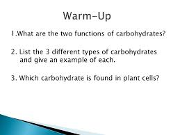 organic molecules are the foundation of life ppt video online
