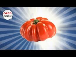 356 best vegetable gardening images on pinterest vegetables