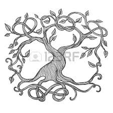 574 celtic tree stock vector illustration and royalty free celtic