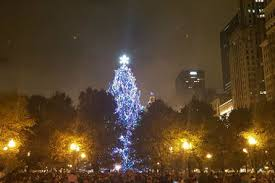 annual tree lighting ceremony illuminates downtown
