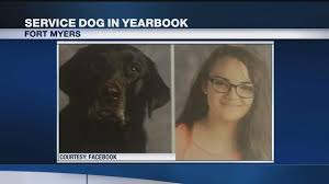 yearbook finder riverdale student s service dog gets yearbook slot nbc 2