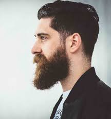 beard styles and tips on growing and styling beard