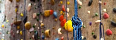 Rock Garden Seattle Gardens Seattle Indoor Climbing And The Best