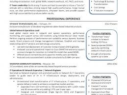 cio resume sweet looking cio resume 12 cio resume example