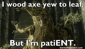 Tree Puns 10 Best Tree Puns That Willow Make You Laugh 6 Is Sweet Punreal