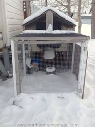 Can You Have Chickens In Your Backyard Keeping Chickens In Serious Winter Northern Homestead