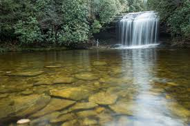 North Carolina waterfalls images Raven rock falls waterfalls of western north carolina jpg