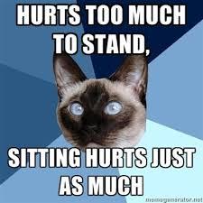 Back Pain Meme - 55 best funny back pain memes images on pinterest chronic pain