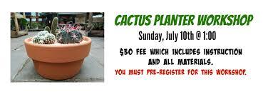 Cactus Planter cactus planter workshop
