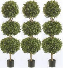 3 artificial 56 boxwood 3 bush outdoor uv topiary tree 5