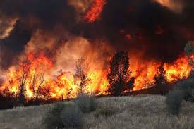 Wildfire Clearlake Ca by There U0027s A Better Way To Tame Large Forest Fires So Why Don U0027t We