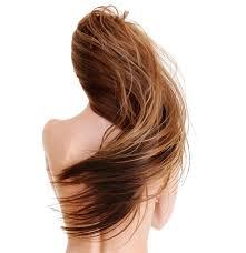 hair vagaina photos menopause beautiful hair comes from the inside ccherb