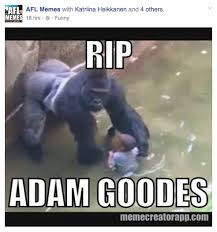 Funny Gorilla Memes - afl memes adam goodes post harambe the gorilla know your meme