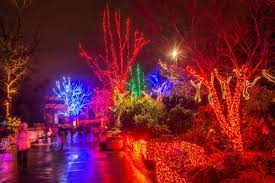 oregon zoo lights 2017 zoo light scavenger hunt