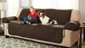 ikea dogs shining sample of sleeper sofa chaise under 3 seater velvet sofa
