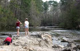 Louisiana national parks images Camping and things to do with kids in kisatchie national forest jpg