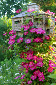 1862 best rustic cottage style gardens images on pinterest