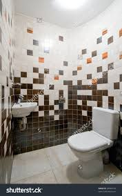 tiny toilet room home design interesting toilet rooms design