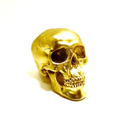 skulls human skull head gold skull art anatomy modern home