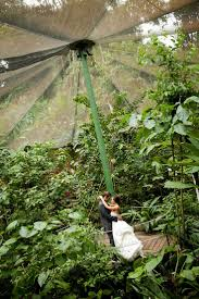 best 25 costa rica wedding locations ideas on pinterest costa
