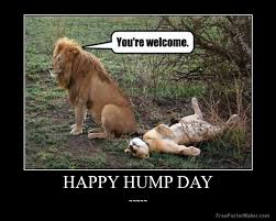 Sexy Hump Day Memes - i want you to post happy hump day messages on this post guys