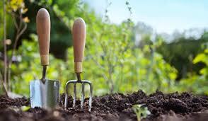 how a u201cno till u201d method can grow vegetable and fruit gardens