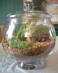 cool home creations bring in the outdoors terrarium second edition