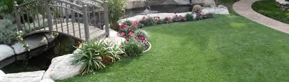 high quality artificial grass at a reasonable price hunny do grass